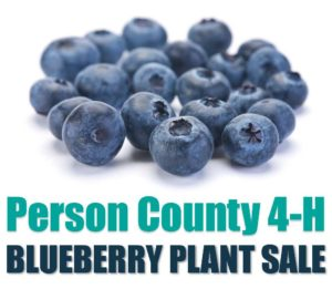 Cover photo for Blueberry Plant Sale Fundraiser